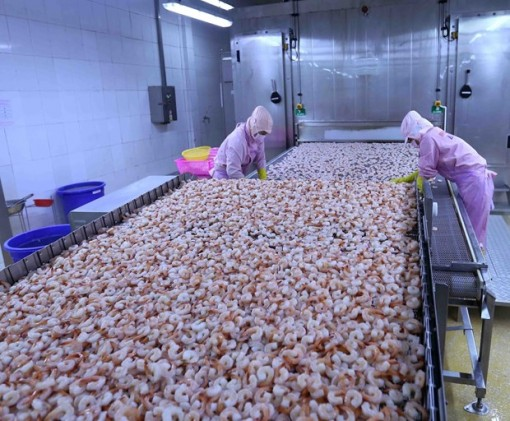 Gov't to issue lists of preferential tariffs under EVFTA