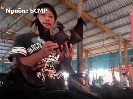 Thịt dơi vẫn đắt khách ở Indonesia, bất chấp nguy cơ virus Corona