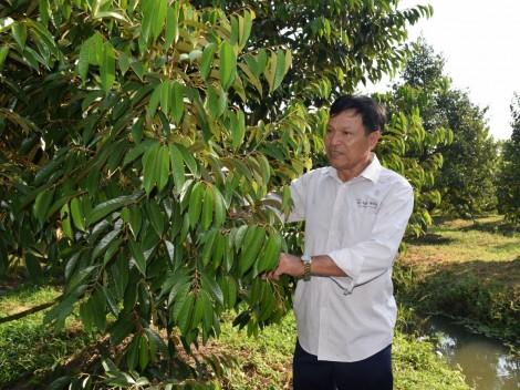 Giải pháp thích ứng biến đổi khí hậu  cho cây trồng và vật nuôi vùng ĐBSCL