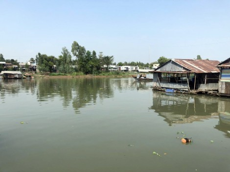 An Giang: Khẩn trương di dời các bè nuôi cá trên khu vực sông Cái Vừng
