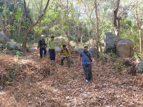 Căng sức giữ rừng Bảy Núi