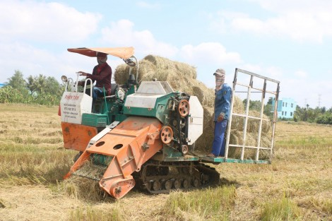 Nông dân thu gom rơm bằng máy cuốn rơm đa năng