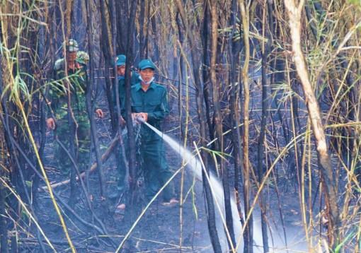 Cà Mau: Lại cháy tại vùng đệm rừng U Minh Hạ