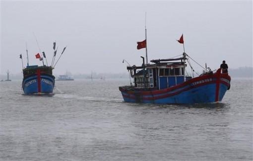 US senators express concern over East Sea situation