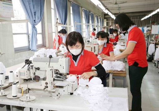 Vietnam could become world's face mask factory amid COVID-19