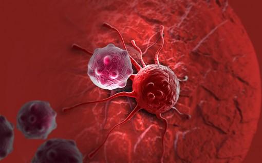 Làm nóng khối u ung thư giúp hệ miễn dịch dễ tìm diệt