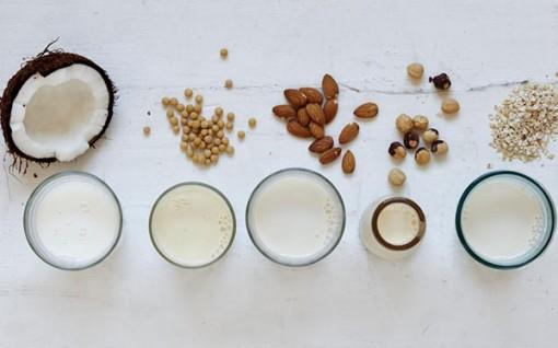 Những sản phẩm thay thế các chế phẩm từ sữa bò