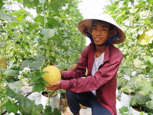 Sản xuất xanh để nông sản Việt tham gia chuỗi giá trị toàn cầu