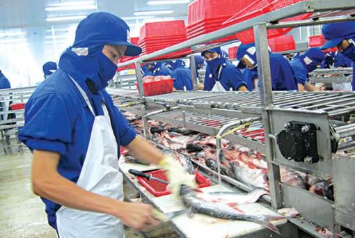 Trợ lực khai thác thị trường và vốn cho doanh nghiệp thủy sản