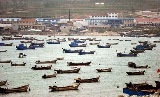 Trung Quốc đánh cá trái phép trên vùng biển Triều Tiên