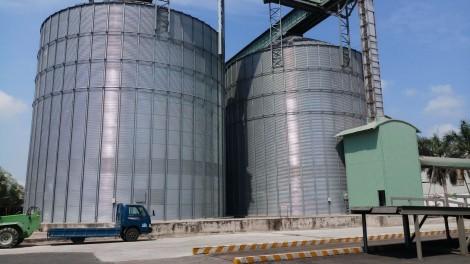 """Doanh nghiệp xuất khẩu gạo sẵn sàng """"tăng tốc"""" với EVFTA"""