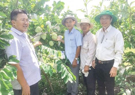 Nở rộ những mô hình, điển hình nông dân sản xuất kinh doanh giỏi