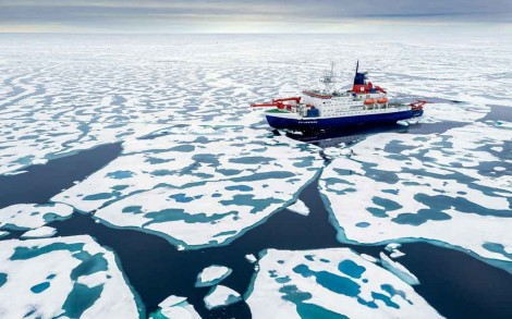 Bắc Cực chuyển sang  vùng khí hậu khác?