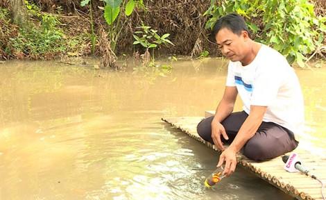 Cá lóc bú bình - sản phẩm thú vị của du lịch Cồn Sơn