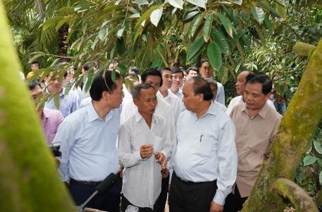 """Thủ tướng thăm mô hình nông nghiệp """"trái mùa nghịch vụ"""" ứng phó hạn mặn"""