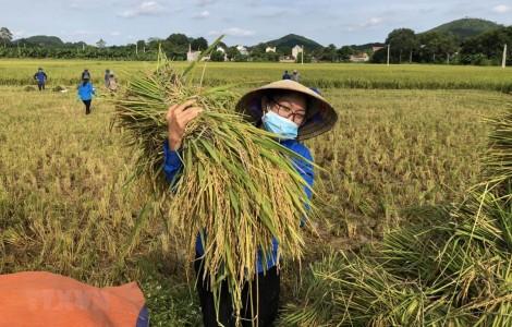 Việt Nam đặt 17 mục tiêu phát triển bền vững đến năm 2030
