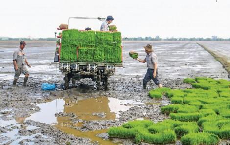 Giúp nông dân nâng cao hiệu quả sản xuất và thu nhập