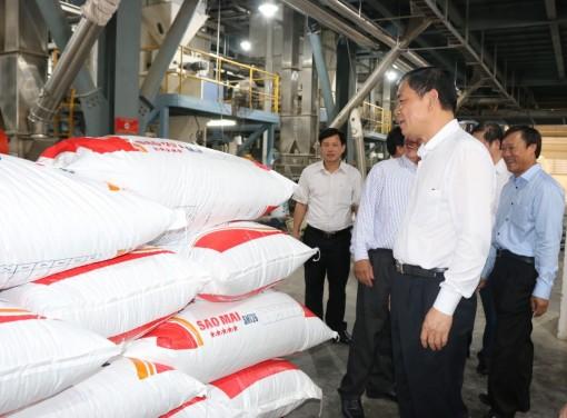 Sao Mai Super Feed giúp hộ nuôi cá tra hạ giá thành sản xuất