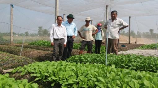 Quan tâm kiểm tra, xác nhận chất lượng cho sản phẩm nông nghiệp