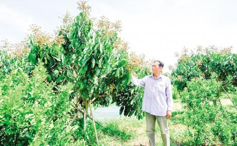 """Chặng """"nước rút"""" về đích  nông thôn mới nâng cao ở Định Môn"""