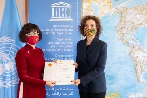 Ambassador pledges utmost efforts to contribute to Vietnam-UNESCO ties