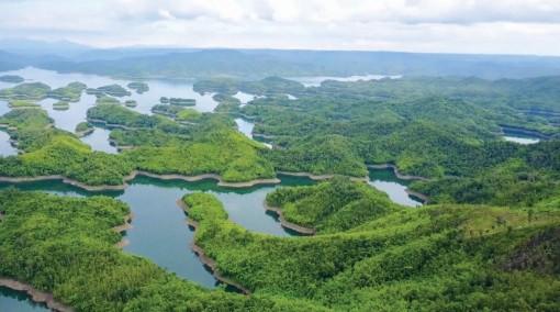 Tà Đùng - Biển hồ trên núi