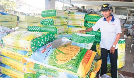 Sôi động thị trường lúa giống