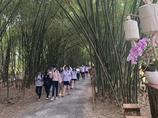 Vườn Tre ở Phú Xuân
