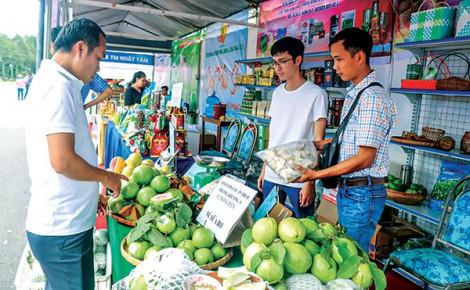 Nâng chất hoạt động cho khu vực kinh tế hợp tác