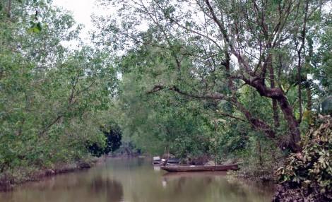 Bồng bềnh sóng nước sông Hậu khám phá miệt vườn cù lao Mây