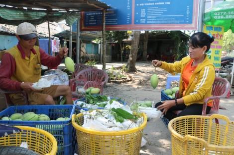 Liên kết, phát huy mô hình sản xuất nông nghiệp hiệu quả