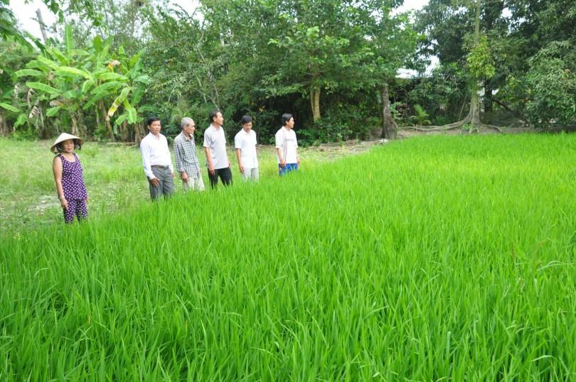Tạo sức bật cho phát triển nông nghiệp