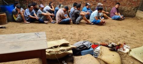 Triệt phá điểm đá gà tại phường An Bình
