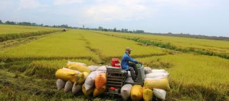 Đầu tư cơ sở hạ tầng nông nghiệp, ứng phó khô hạn, xâm nhập mặn