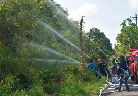 Cà Mau: Tăng cường phòng cháy, chữa cháy rừng