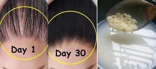 Giải pháp tự nhiên giúp ngăn rụng tóc và kích thích mọc tóc
