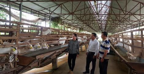 Triết lý khởi nghiệp  của Nguyễn Văn Đua