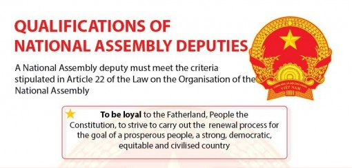 Qualifications of National Assembly deputies