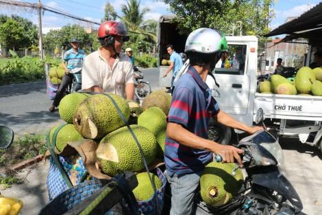 Triển vọng xuất khẩu nông sản vào thị trường Trung Quốc
