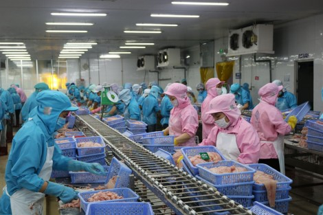 Kiến tạo môi trường kinh doanh thực phẩm thuận lợi, an toàn