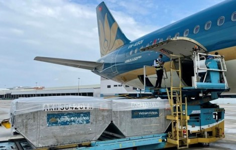 Flights transporting COVID-19 vaccines given priority
