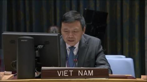 Vietnam pledges to promote role of UN Charter, international law