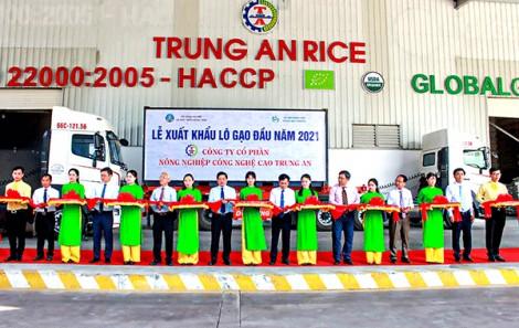 Phân bổ hạn ngạch thuế quan gạo Việt xuất khẩu theo EVFTA