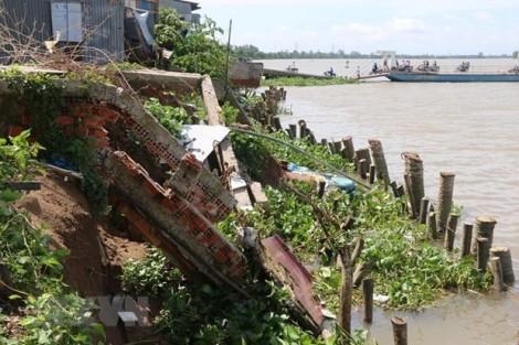 Trà Vinh khẩn cấp khắc phục sạt lở đê bao tại huyện Trà Cú