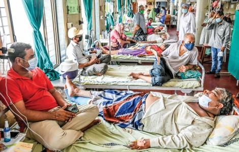 Nấm đen hoành hành giữa đại dịch tại Ấn Độ