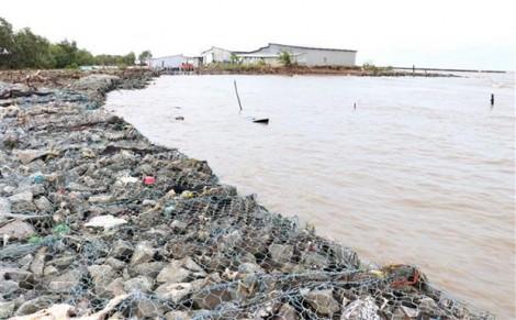 Cà Mau: Đầu tư 890 tỷ đồng xây dựng hơn 26km kè bảo vệ bờ biển