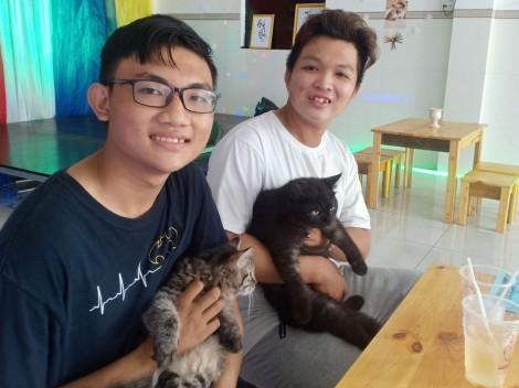 Khai trương quán cà phê mèo ở Cần Thơ