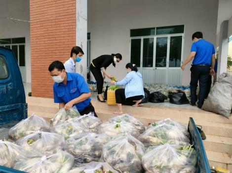 Hỗ trợ tiêu thụ củ cải mùa dịch