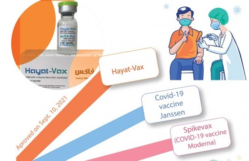 Seven COVID-19 vaccines conditionally approved for emergency use in Vietnam