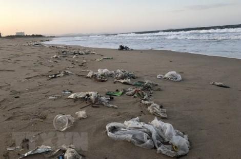 Bảo vệ môi trường biển: Tình trạng ô nhiễm ở mức đáng báo động
